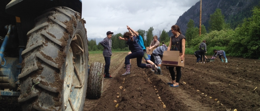 Seed to Table program