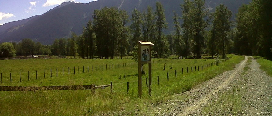 Valley Trail Loop in Pemberton and Area C